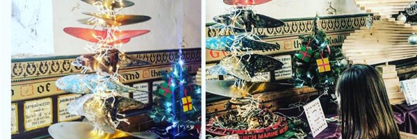 Brightlingsea Christmas Tree Festival Results!